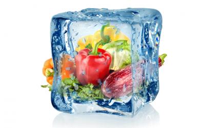 Alimentos congelados vs frescos