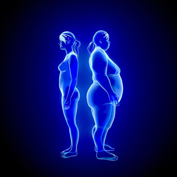 Probióticos: su relación con la pérdida de peso y el buen funcionamiento del organismo